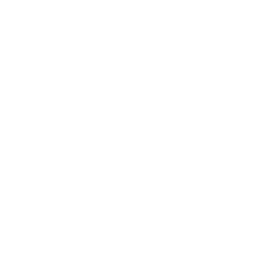 carne-logo-white